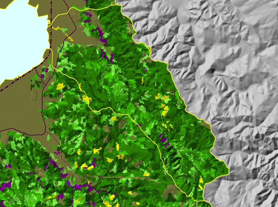 Area Jacoby Creek Topic Map E USFS Vegetation Size Jacoby - Map of us forest service labs
